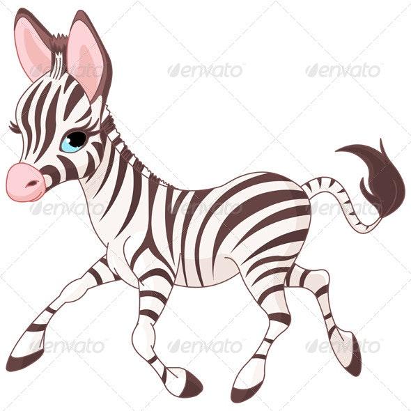 Running Baby Zebra - Animals Characters