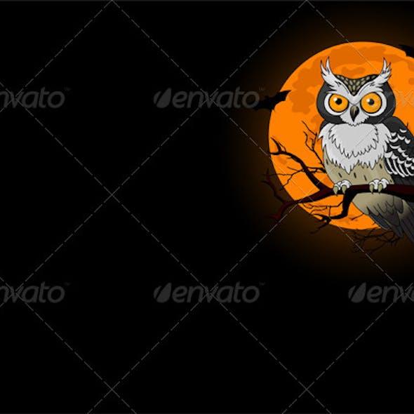 Night Owl Background
