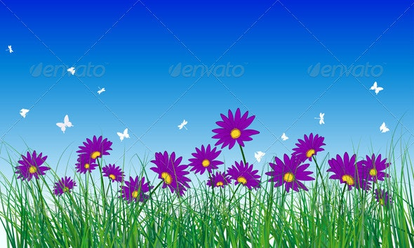 Meadow Color Background - Flowers & Plants Nature