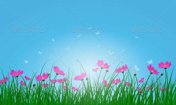 Meadow Color Background - Flowers & Plants Nature