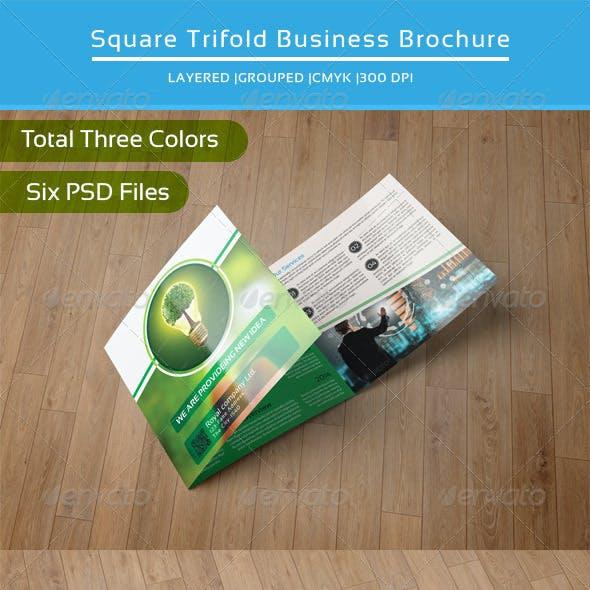 Square Trifold Business Brochure-V15