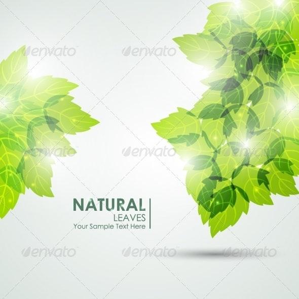Natural Leaves Vector - Seasons Nature