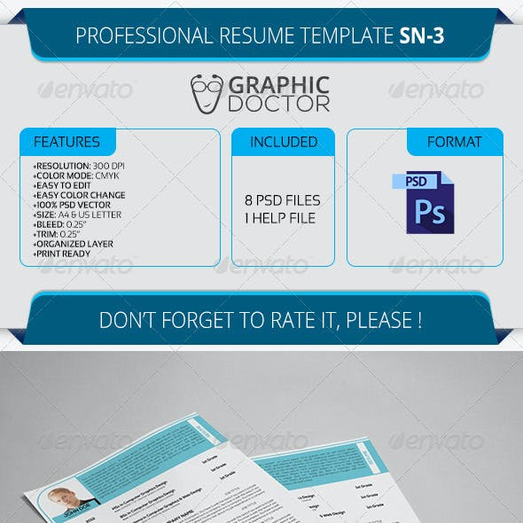 Professional Resume Template SN-3