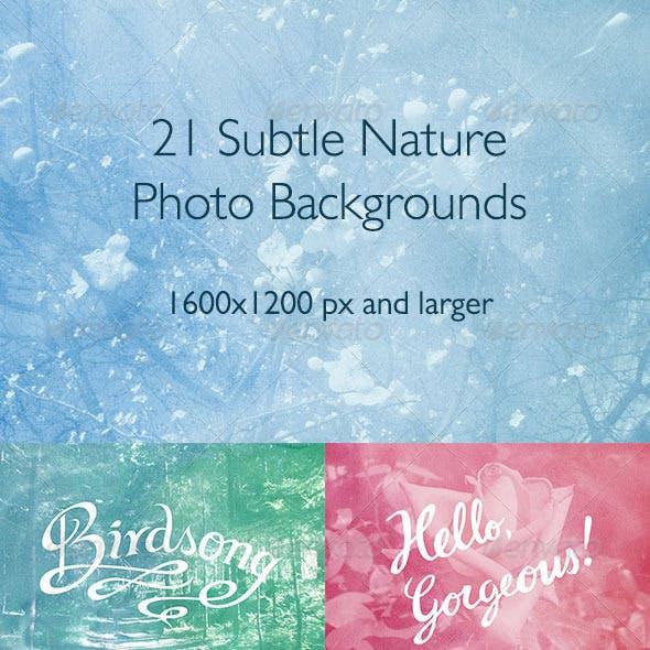 21 Subtle Nature Photo Backgrounds