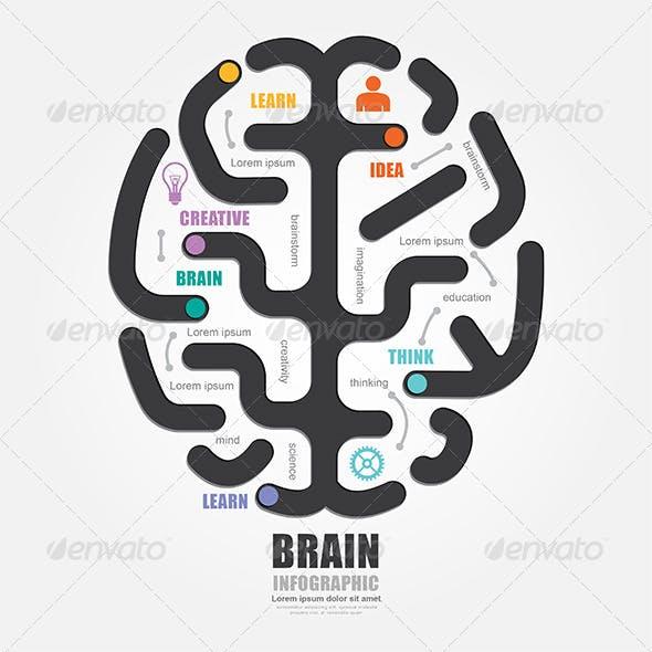 Infographics Vector Brain Design Diagram Line Styl
