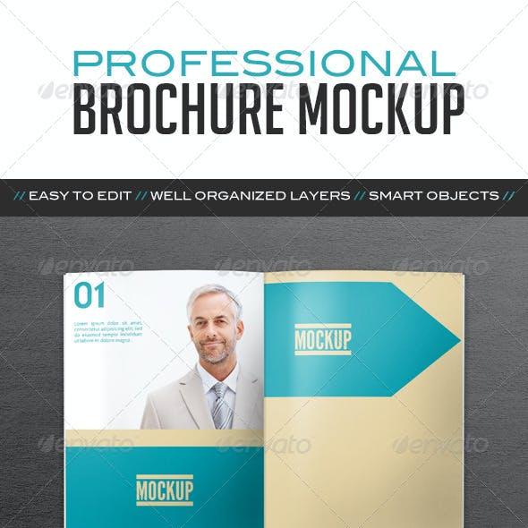 Professional Brochure Mockup