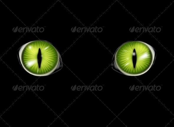 Cat Eyes Background - Animals Characters