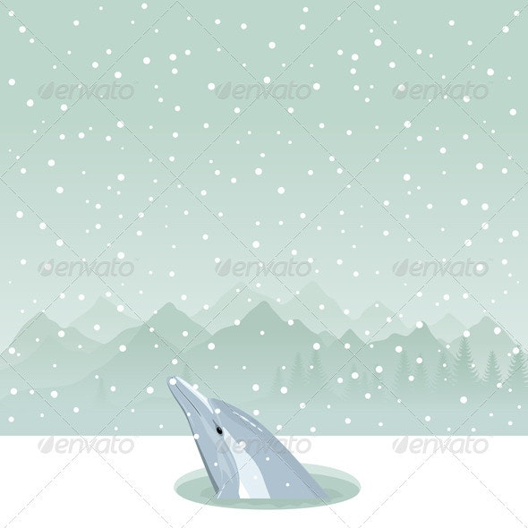 Dolphin in an Ice-Hole - Animals Characters