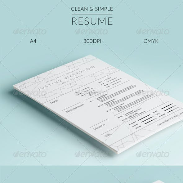 Clean And Simple Resume / CV