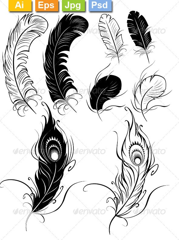 Feathers - Tattoos Vectors