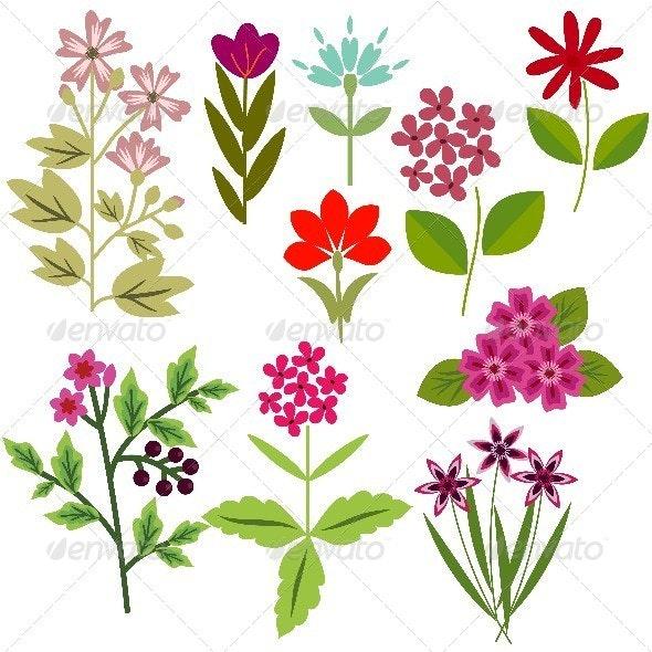 Flowers Set - Miscellaneous Vectors