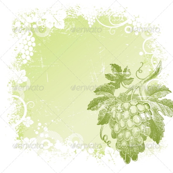 Background with Hand Drawn Grapes - Food Objects