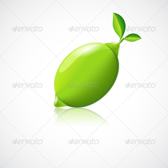 Lime Fruit Icon - Food Objects